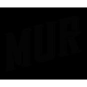 Mur Flavor Shots